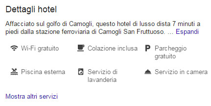 Servizi e Amenities Google MyBusiness